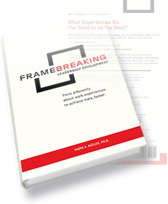 FrameBreaking Book